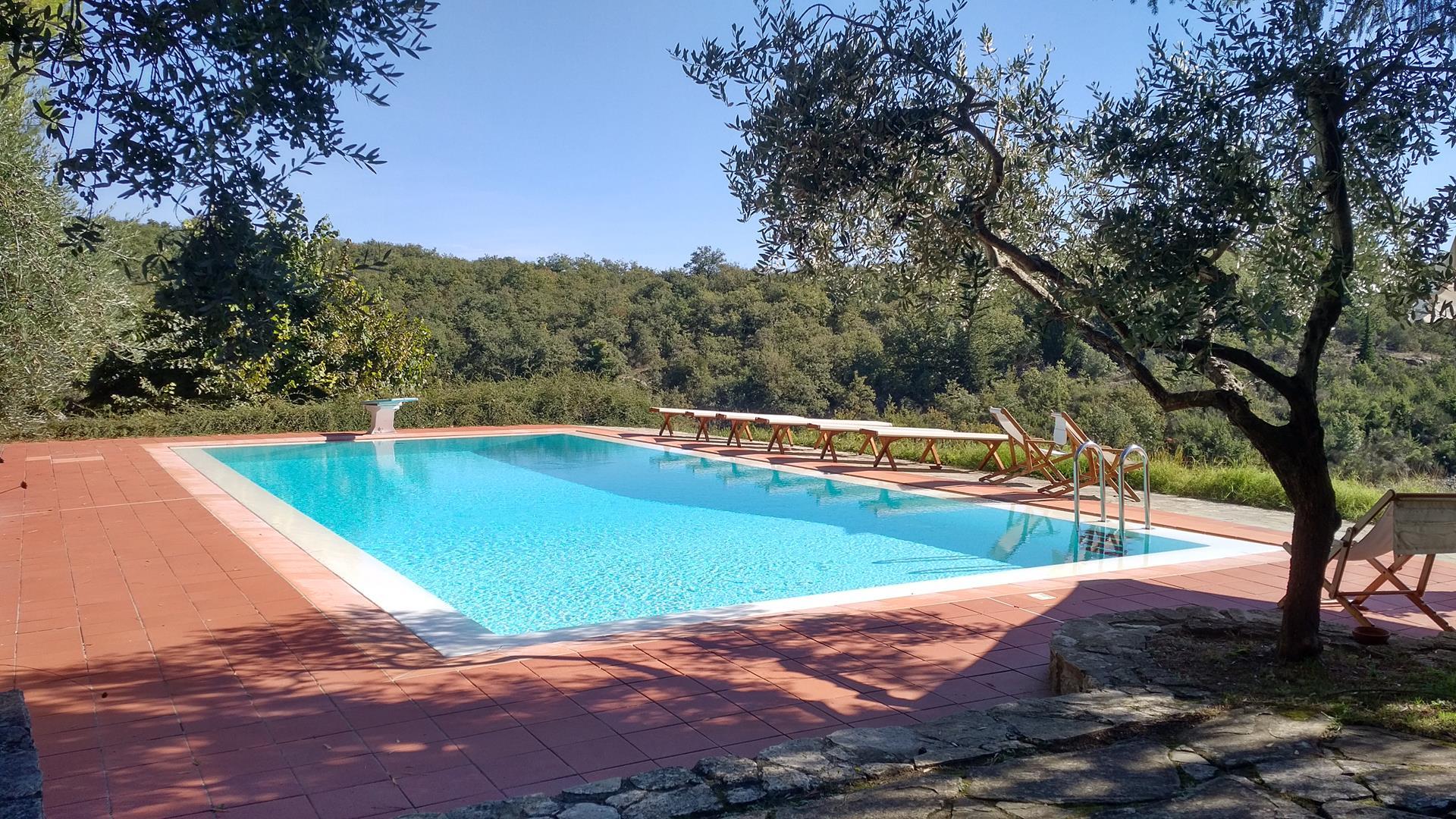 realizzazione-piscine-siena-19